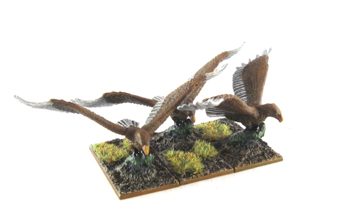 WM Wood Elf - Eagles